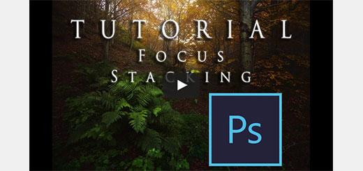 focus-stacking